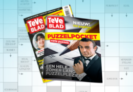 https://www.teveblad.be/specials/puzzelpocket/